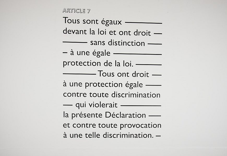 Dichiarazione Diritti Spinelli